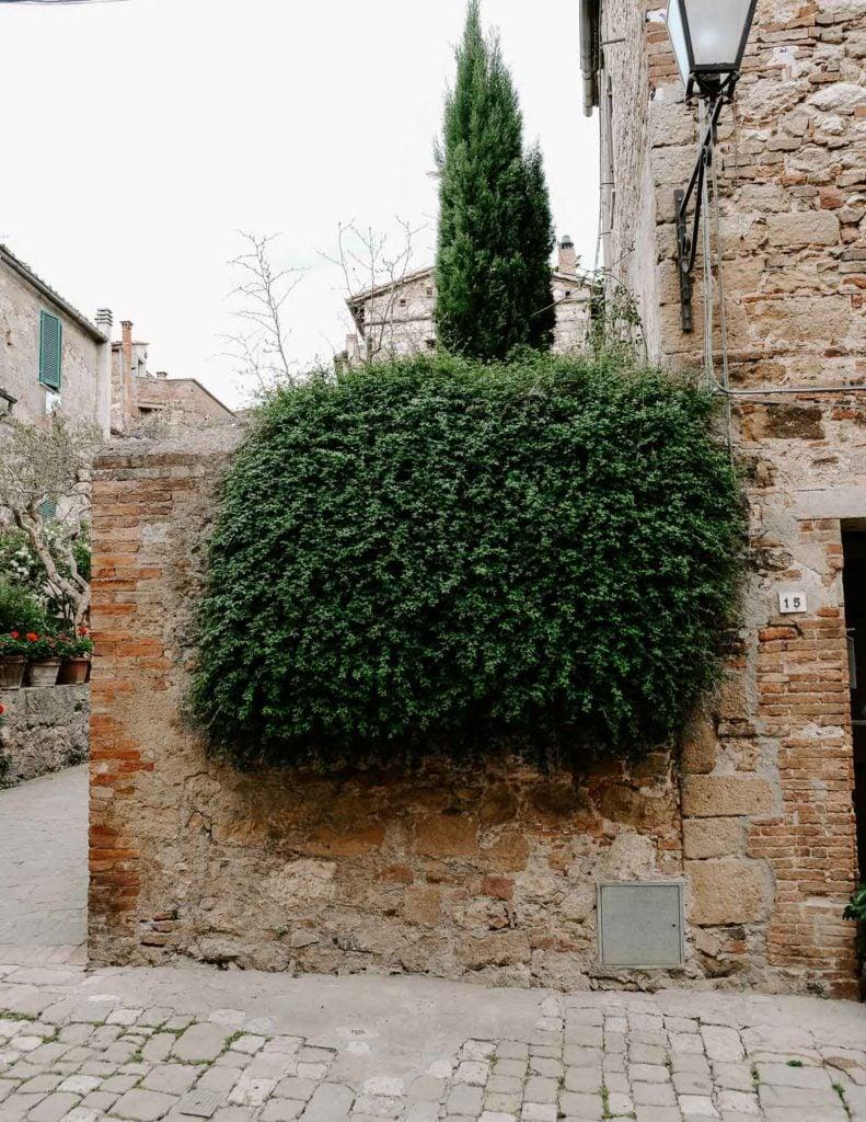 Pienza tuscany italy