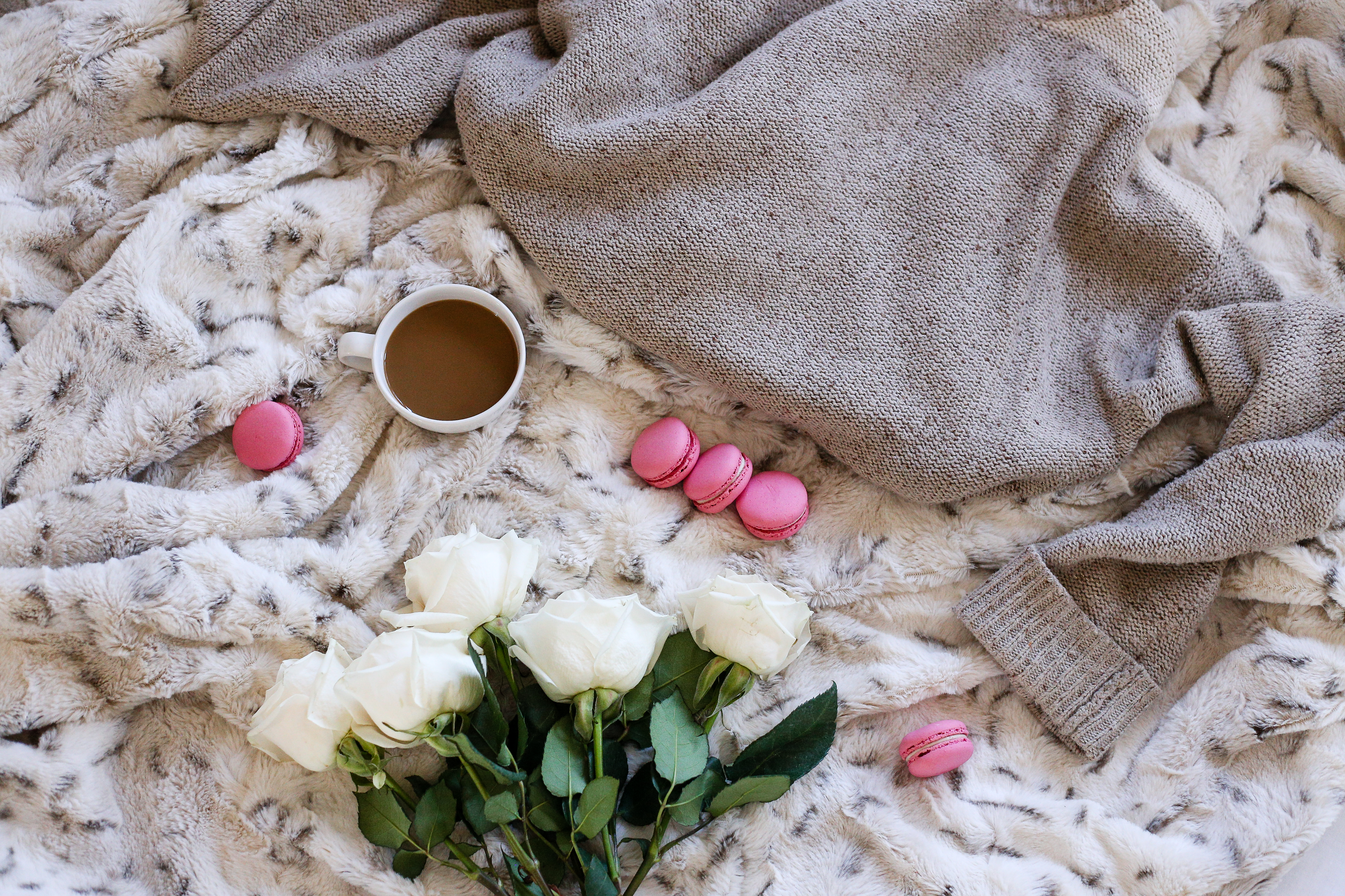 roses flatlay