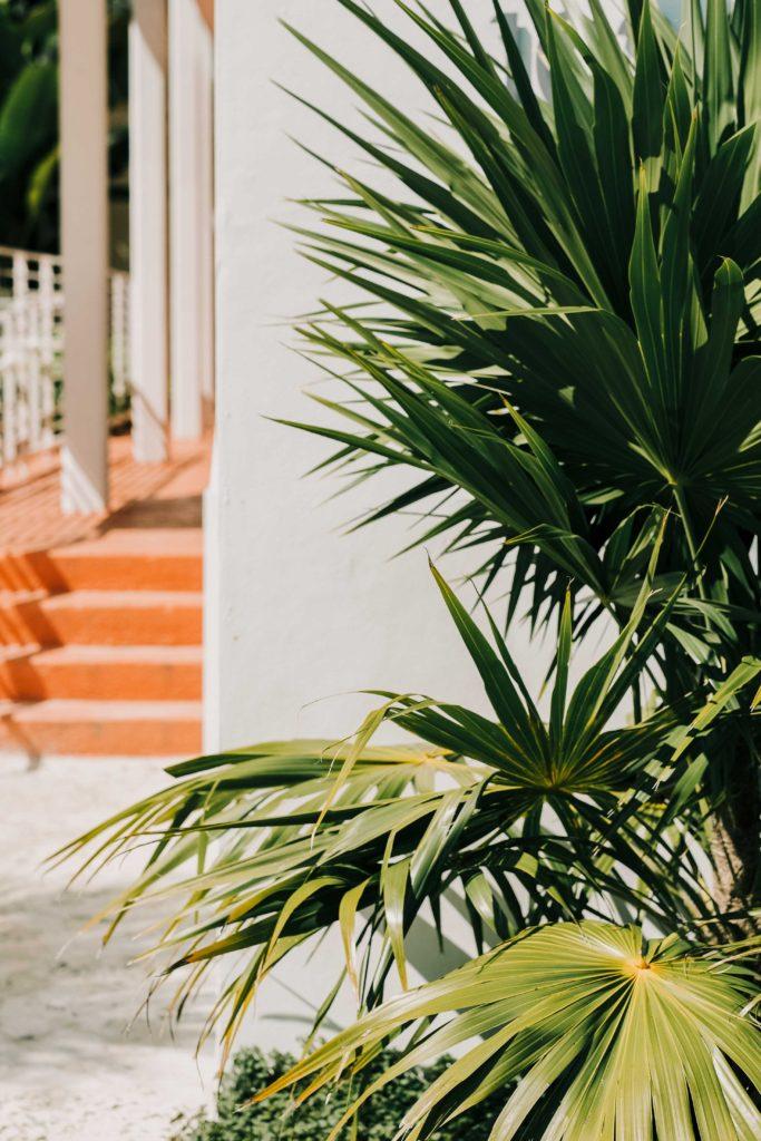 miami florida travel pictures