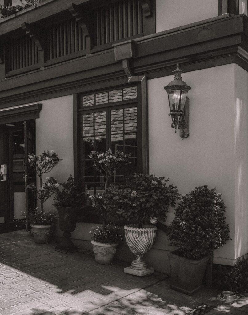 carmel photography