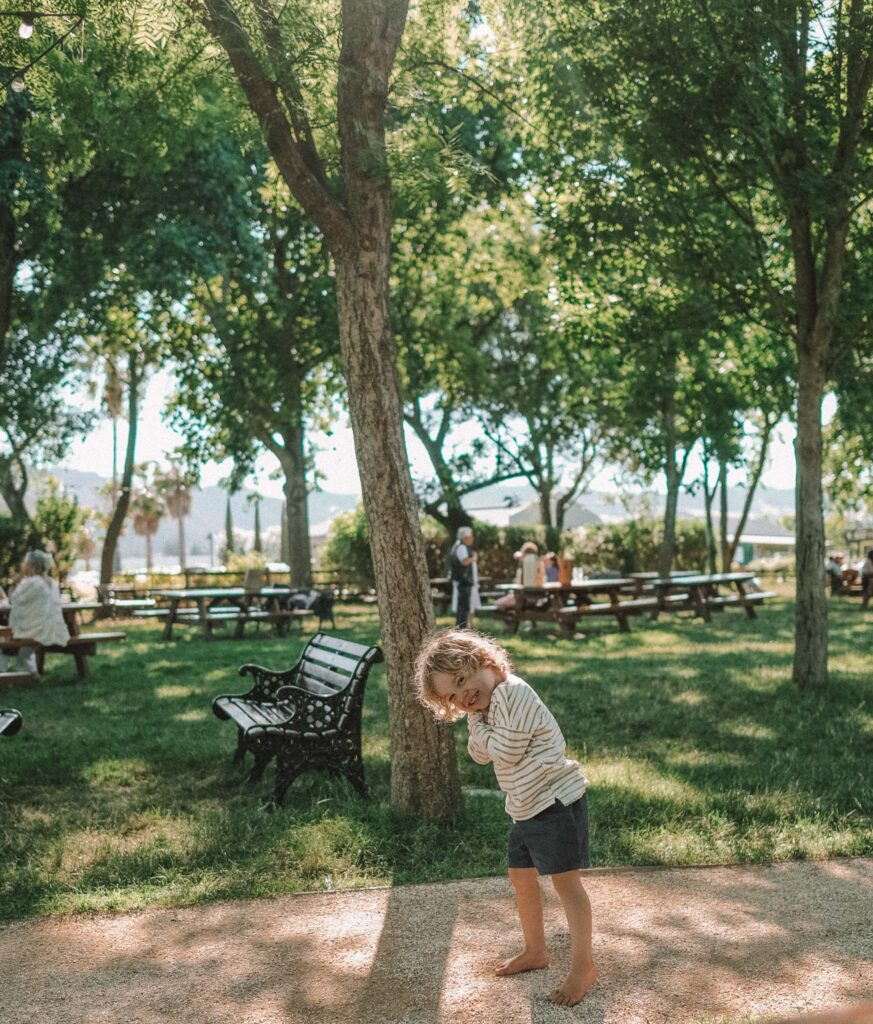 things to do in napa valley with kids