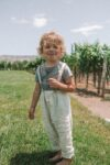 napa valley with kids